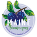 MAINE FOODSCAPES